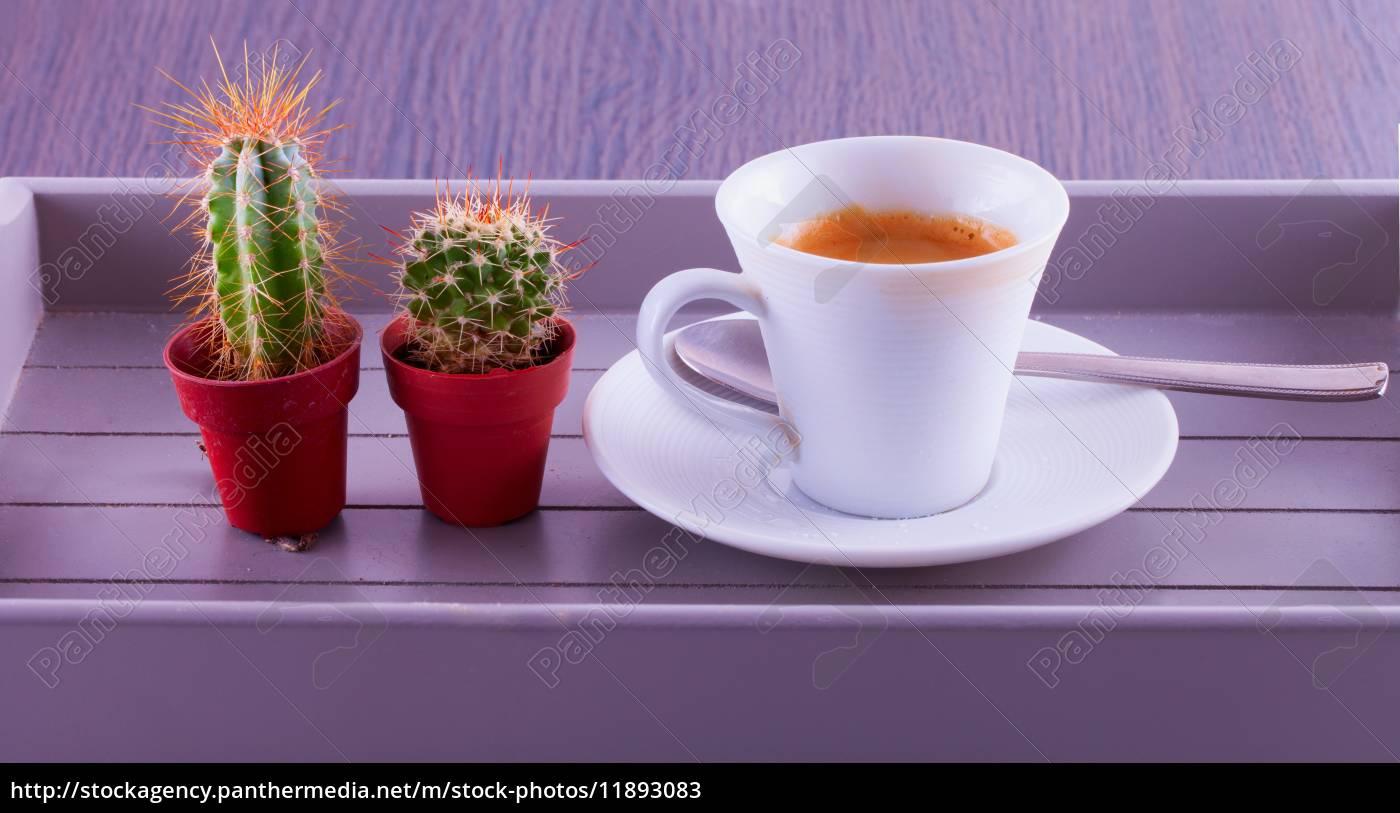 kaffee, und, kakteen - 11893083