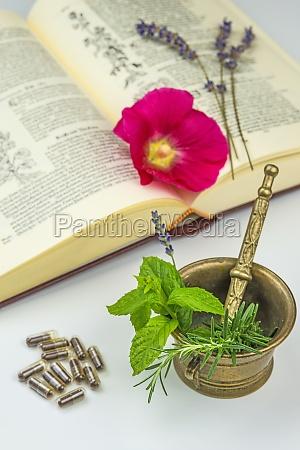 naturheilunde, mit, heilpflanzen - 11925691