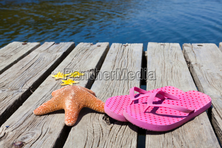 flip flops and starfish on a