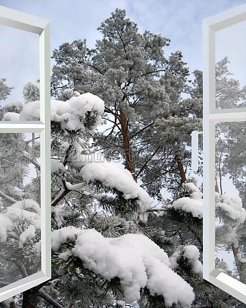 offene fenster auf verschneiten winterwald