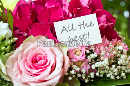 all the best wish congratulation birthday