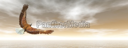 weisskopfseeadlerfliegen 3d render
