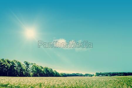 landschaftsfeld mit sonnenschein
