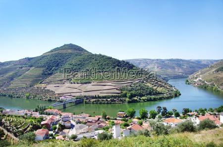 weinberg portugal tal weingarten landschaftsbild landschaft