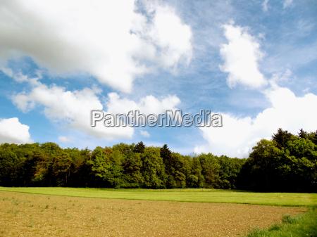 landscape in the swabian alb