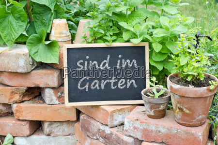 we are in the garden in