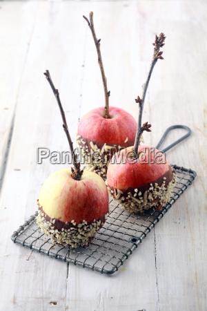 drei frische rote aepfel mit zweigen