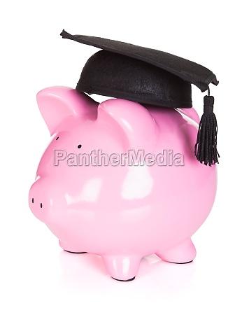 sparschwein traegt graduiertenhut