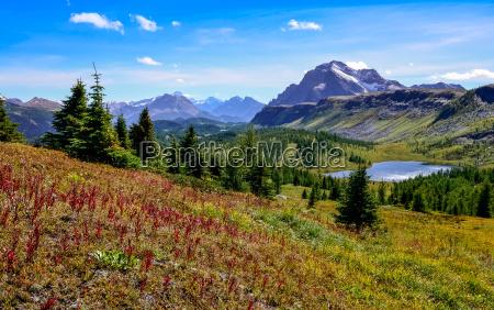 scenic blick auf berge in banff