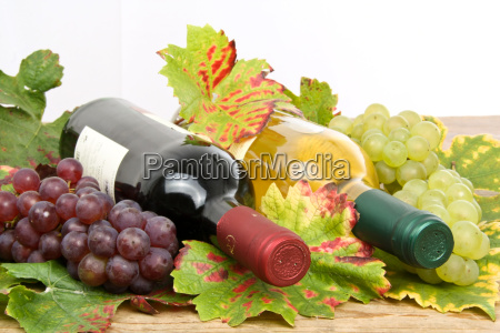 white and red wine wine bottles