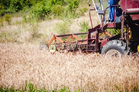 industrial harvesting combine harvesting crops of