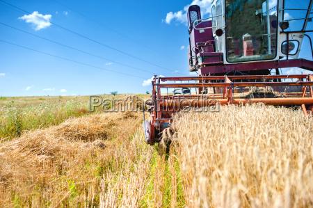 industrial vintage harvesting machinery in wheat