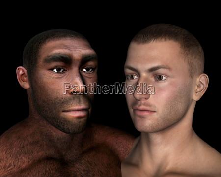 homo erectus und sapiens vergleich