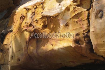sandstone surface
