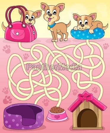 maze 13 mit hunden