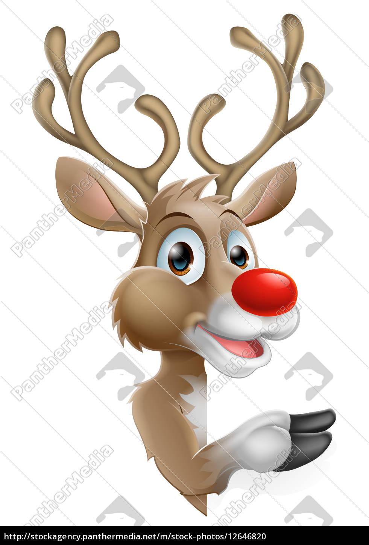 bilder rentiere weihnachten