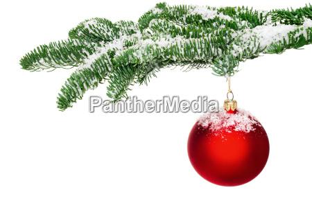 christbaumkugel haengt am verschneiten zweig