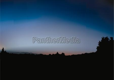 sunrise and shrub silhouette colored