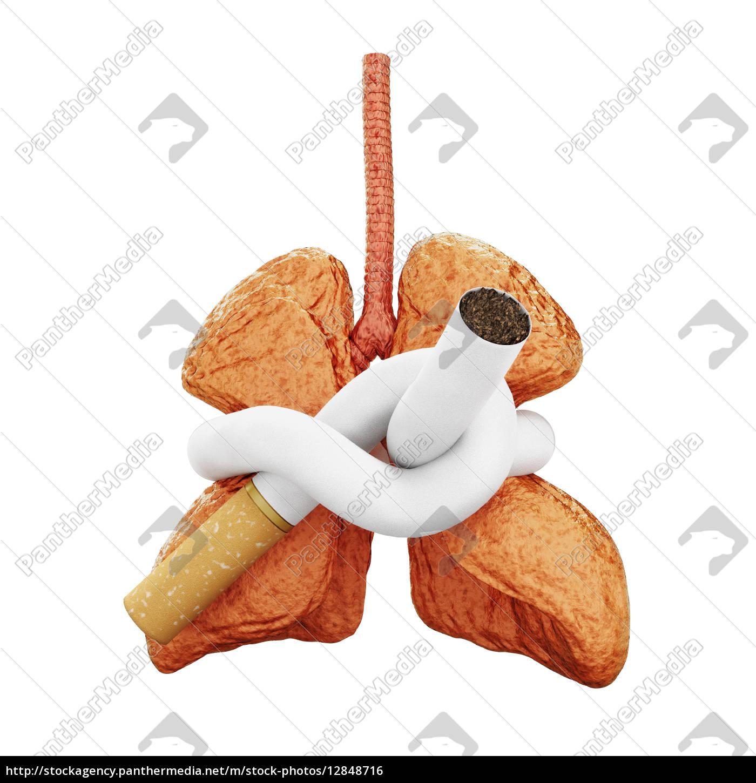 lunge, bedroht - 12848716