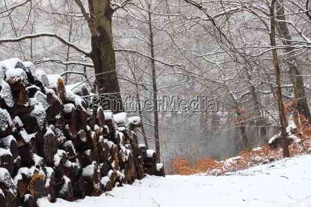gefuehle emotionen winter ruhe funkstille geraeuschlosigkeit