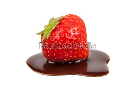 erdbeere schokolade
