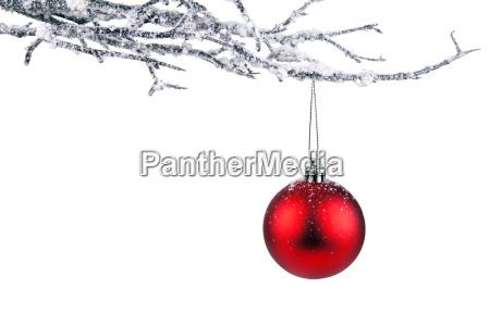 weihnachten zweig