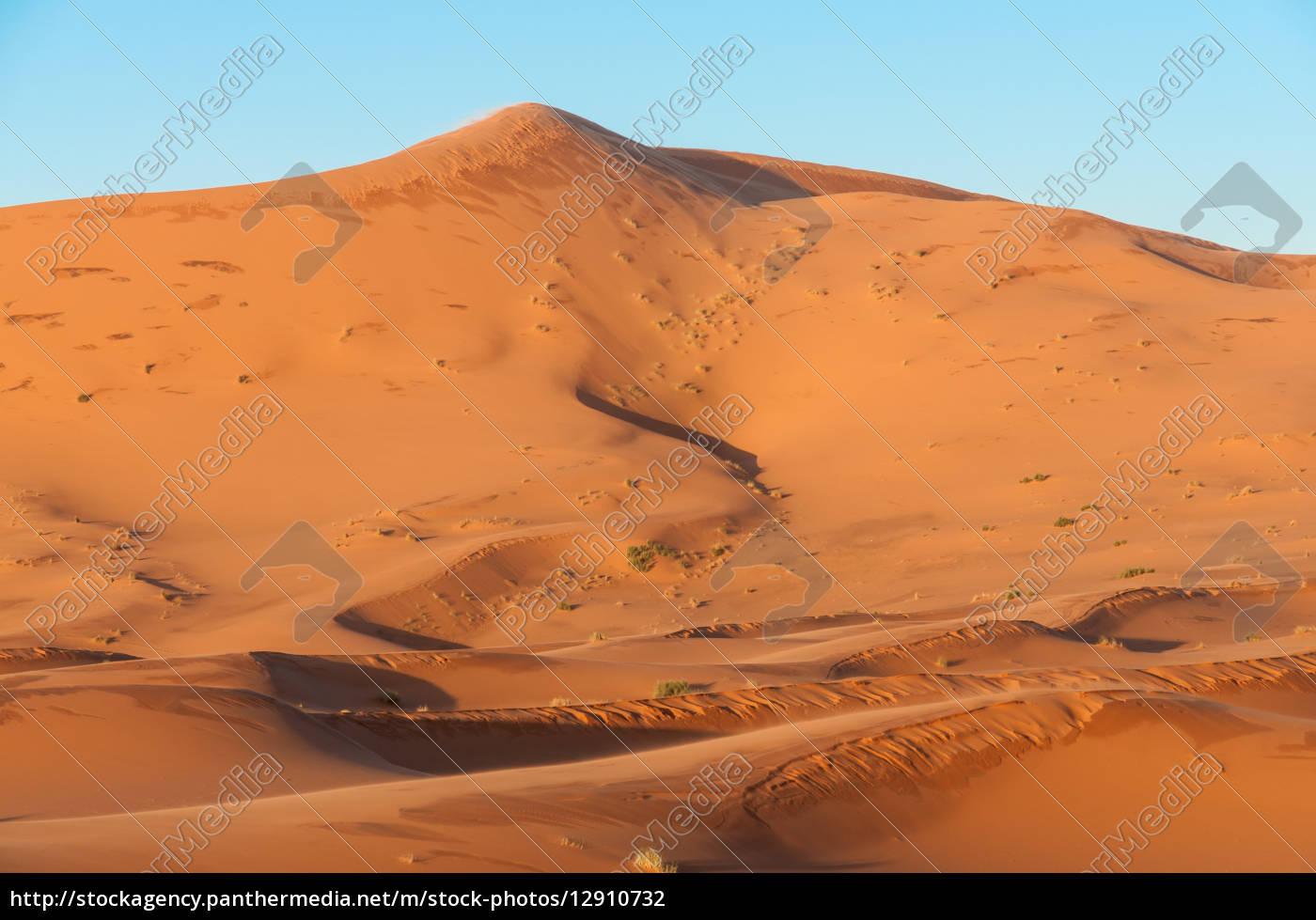 sanddüne, in, der, sahara-wüste, marokko, afrika - 12910732