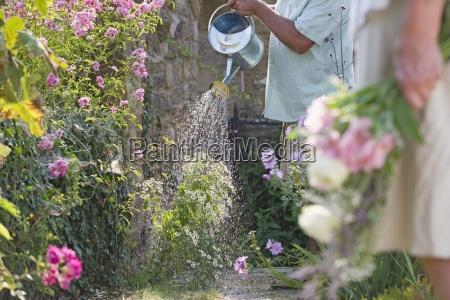 zamknij sie starszy mezczyzna podlewania kwiatow