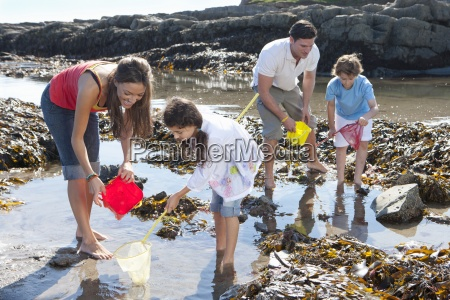 family with nets and pails fishing