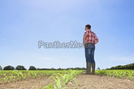farmer mit den haenden auf den