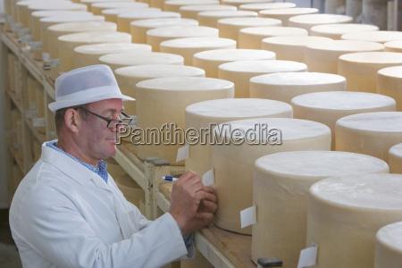 inspector checking young farmhouse cheddar cheese