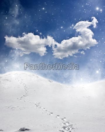 baum kalt kaelte vertraeumt verschneit schneefall