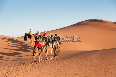 camel caravan with tourists in the