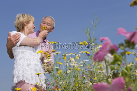 smiling couple smelling wildflowers in sunny