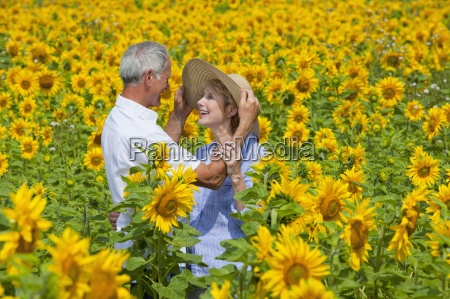 smiling couple among sunflowers in sunny