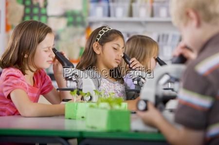 ernsthafte studenten in mikroskopen in wissenschaft