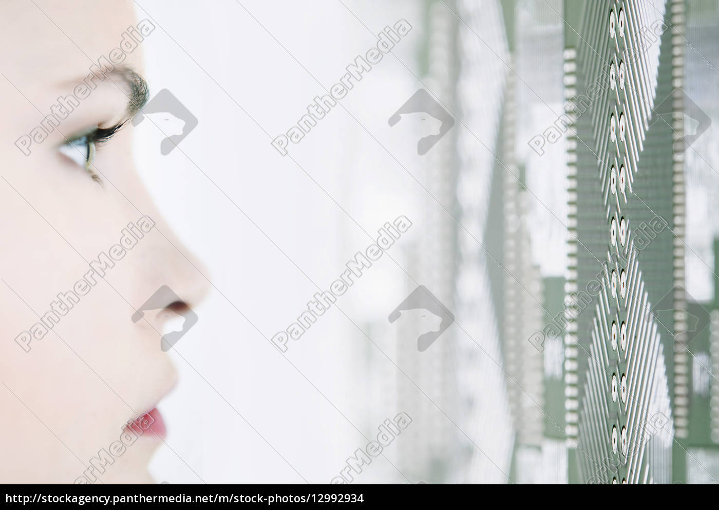 makro, grossaufnahme, macro, makroaufnahme, macroaufnahme, nahaufnahme - 12992934