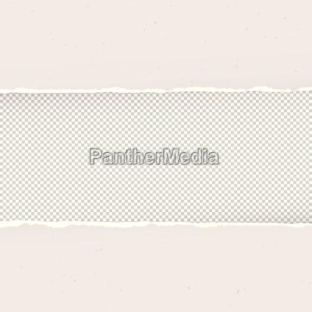 torn paper on transparent background design