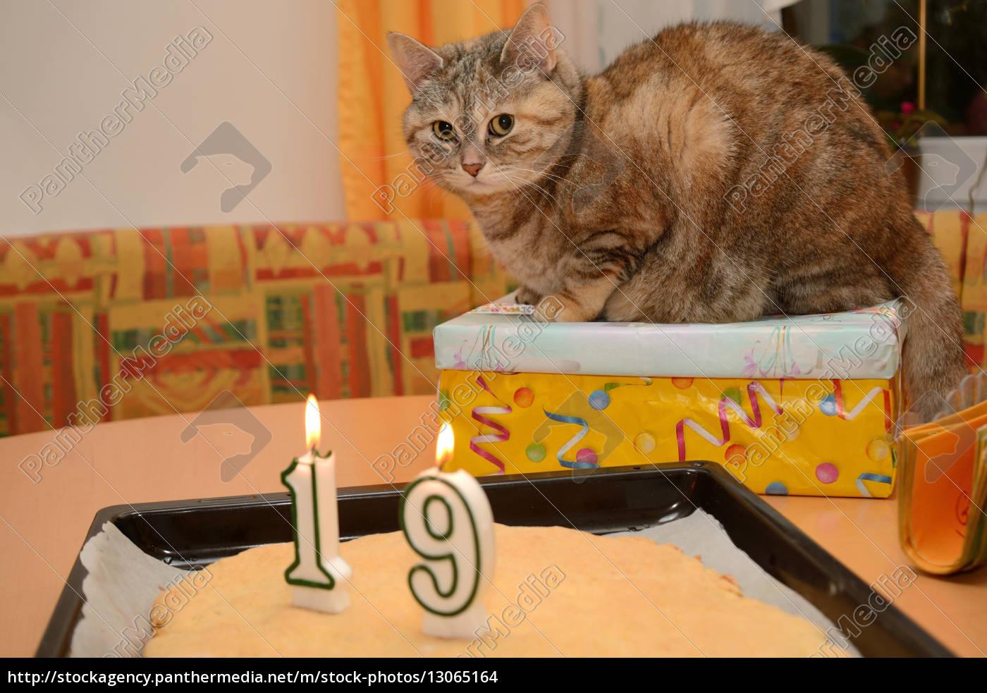 Happy Birthday Herzlichen Gluckwunsch Zum Geburtstag Geburtstag
