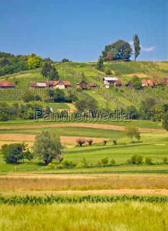 landwirtschaftliche landschaft landschaft vertikale ansicht