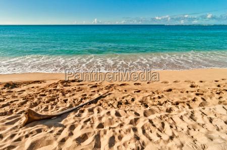 exotisch tropische tropisch eiland salzwasser see
