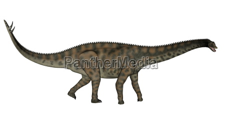 freisteller abgeschieden dinosaurier isolierte jura vorgeschichtlich