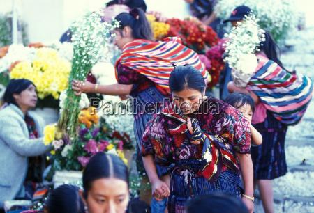 latin america guatemala chichi