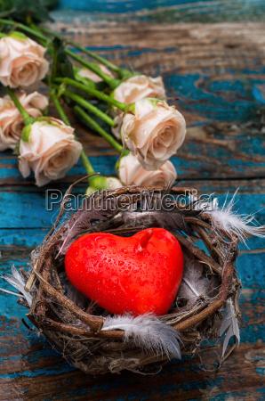 fruehjahr bird nest als symbol der