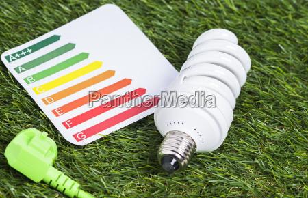 energy saving lamp on the grass