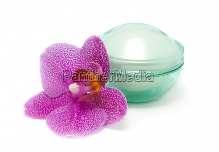 face cream and orchid isolated on