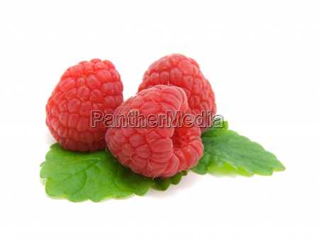 three raspberries with green leaves on