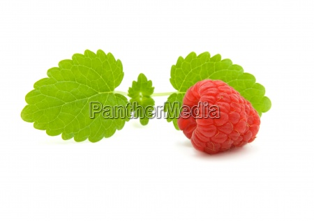 raspberry with green leaves on white