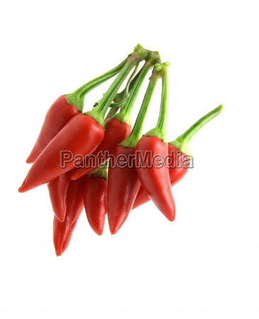 bunch of red hot chili pepper