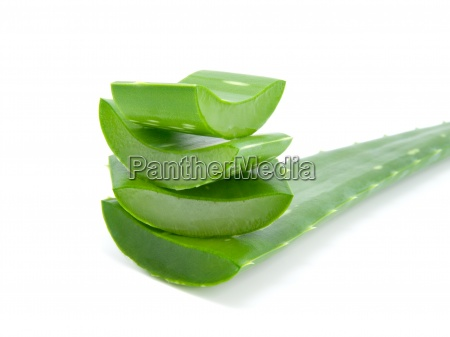 sliced u200bu200baloe leaves isolated on white